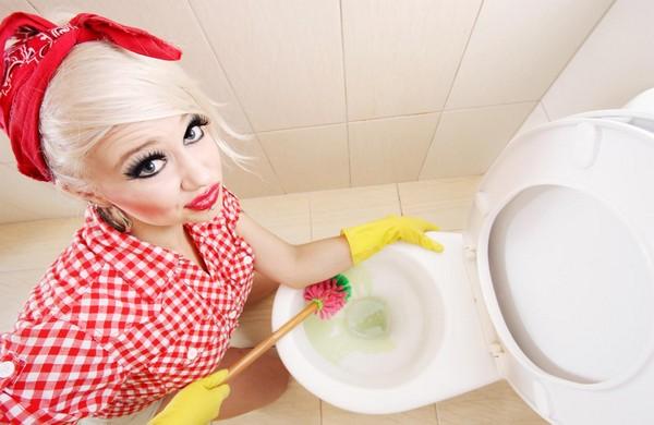как отмыть унитаз фото
